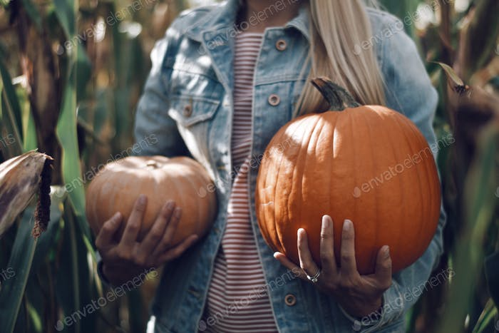 midsection; woman; young adult; holding two pumpkins; cornfield; autumnal; autumn lifestyle; fall