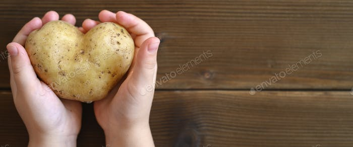 ugly food. kid's hands holding ugly vegetable a heart shaped potato on a wooden plank table. banner
