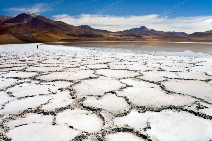 Remote Tuyajto Lagoon and Salt Flats (3800m) in Atacama Desert in the north of Chile, South America.