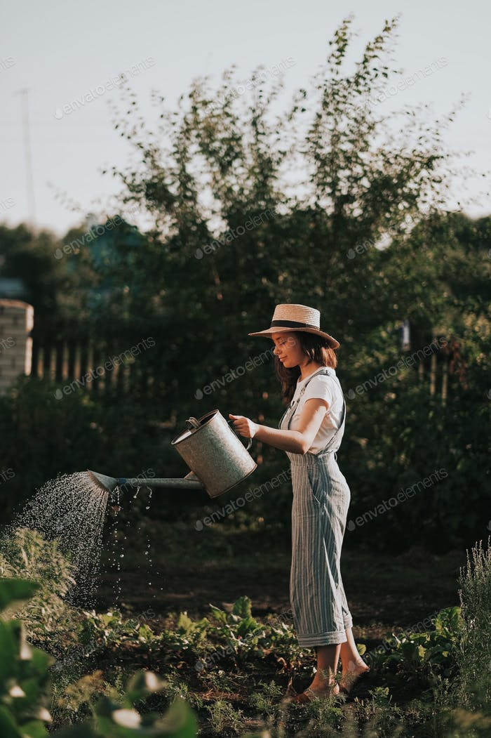 A country girl in the garden with a watering can in her hands watering beets and carrots.  Farm life