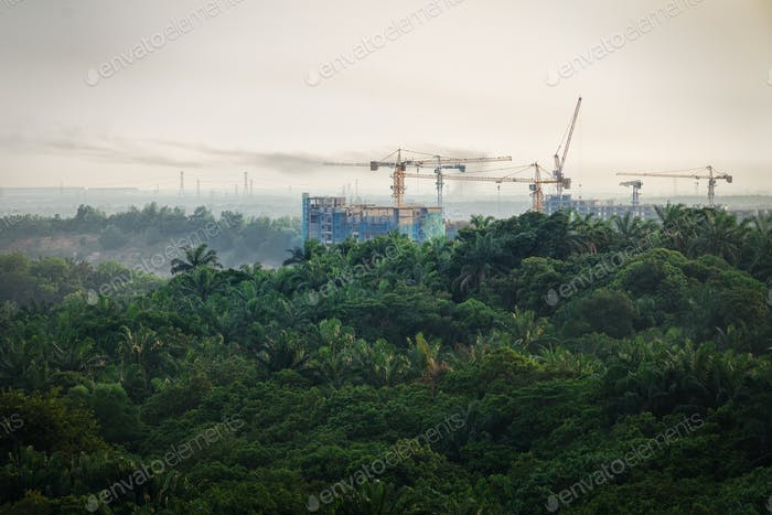 Tropical forest destruction - construction of skyscrapers in forest zone