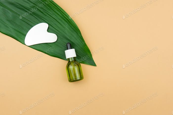 An unbranded green CBD cannabis oil with a Gua sha massaging scraping tool lie on a green leaf.
