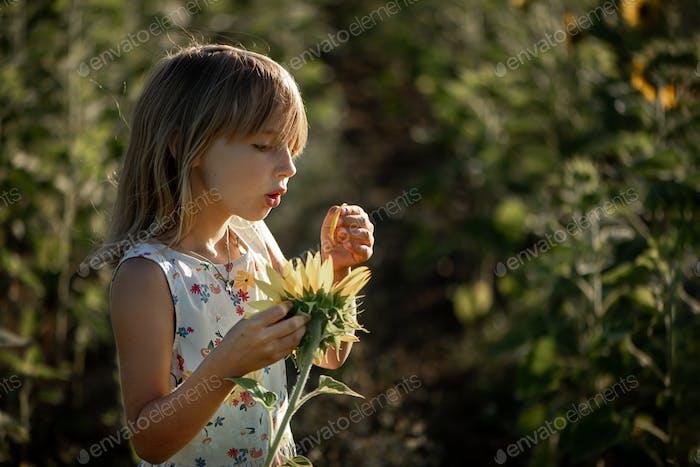 niña de 6-7 años en el verano en el campo con girasoles.