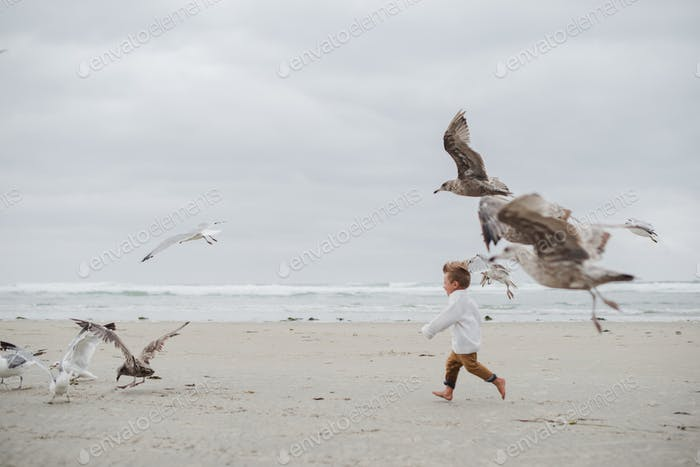 Boy running on a cloudy beach with seagulls flying beside him