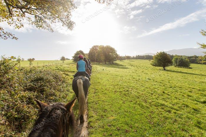 A horseback riding tour through the countryside