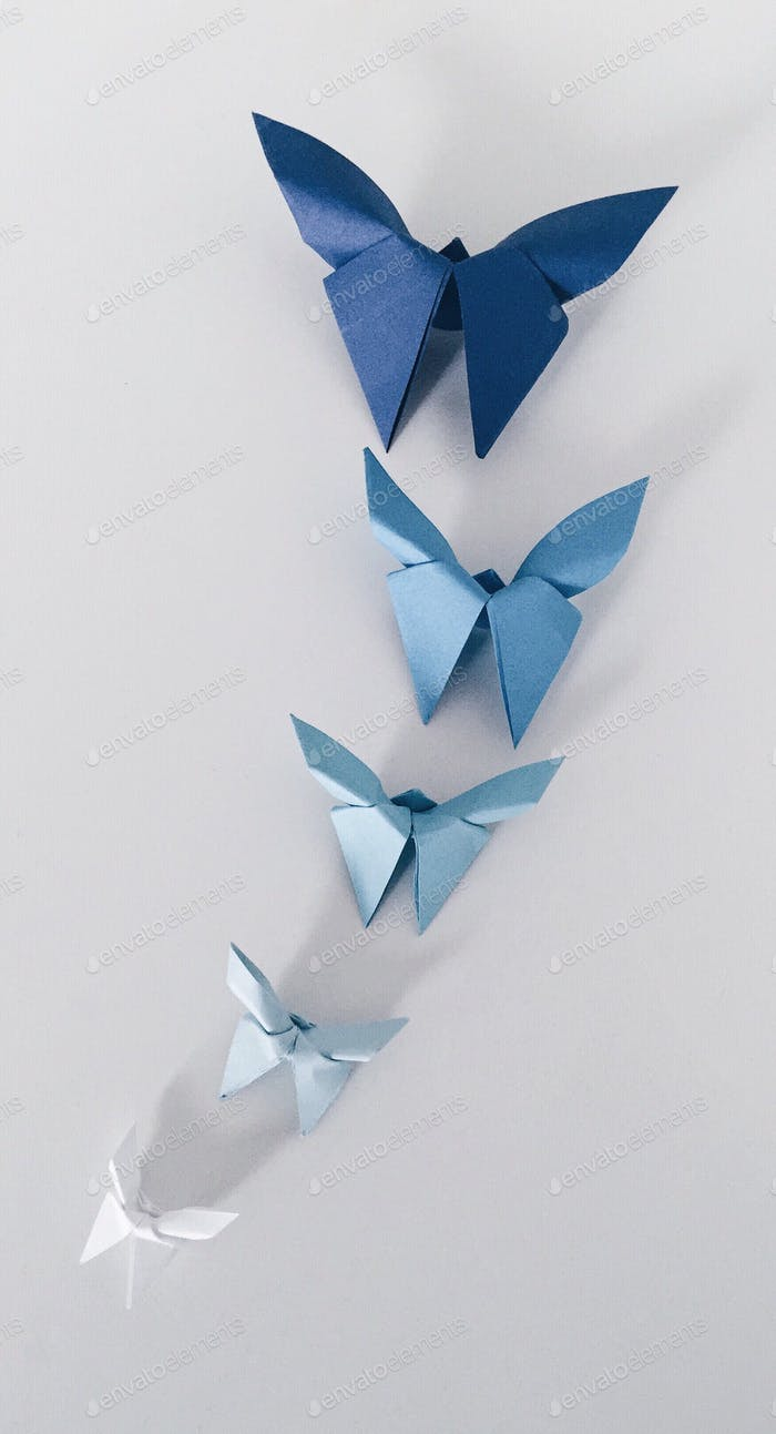 Over head shot of origami butterflies in different shades of blue paper on white background