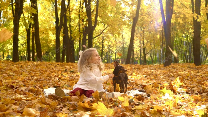 A little girl with a small dog in an autumn park