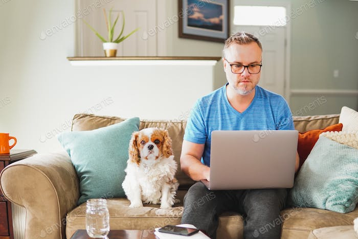 Business man working from home on laptop computer telecommuting on couch remote with puppy dog