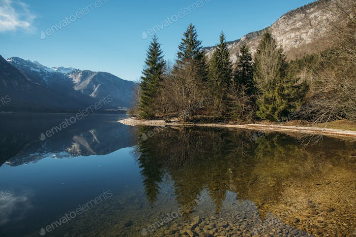 Beautiful forest reflection in the Bohinj lake with surrounding mountains.