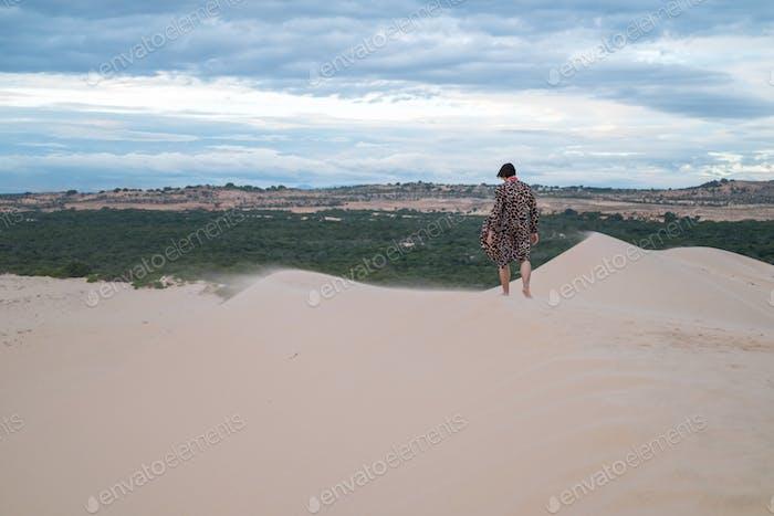 Wanderer walking in the desert.