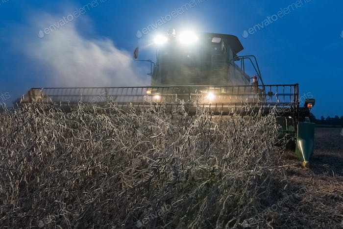 Incoming soybean Harvester