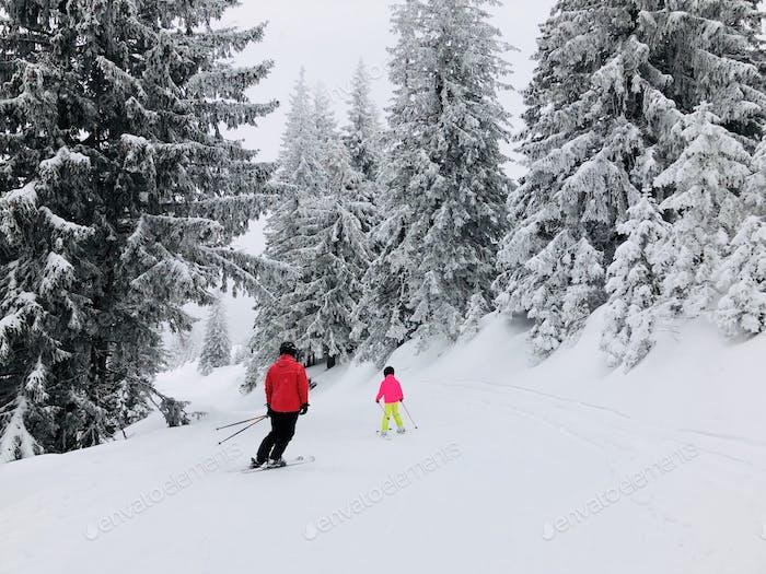 Erwachsener Skifahrer bringt kleinen Kindern das Skifahren auf einem von Schnee bedeckten Nadelbäumen bei