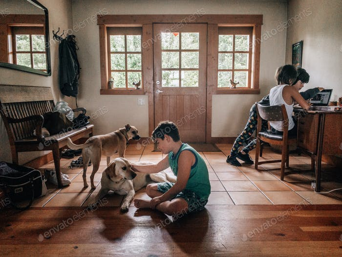 Three young boys and two dogs in a cabin foyer.