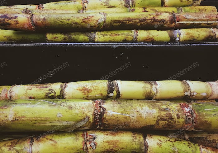 Sugarcane and sugar