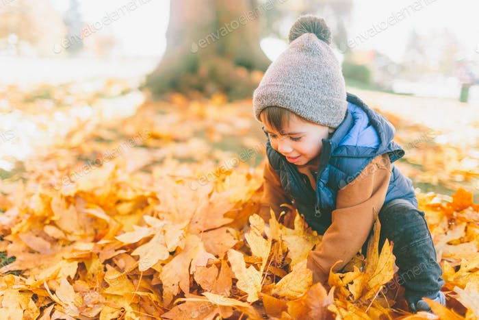 A little boy playing in a pile of fall leaves.