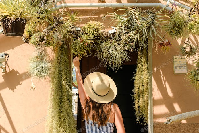Young woman from behind in plant conservator. Adult, conservatory, female, florist, flowers, garden,