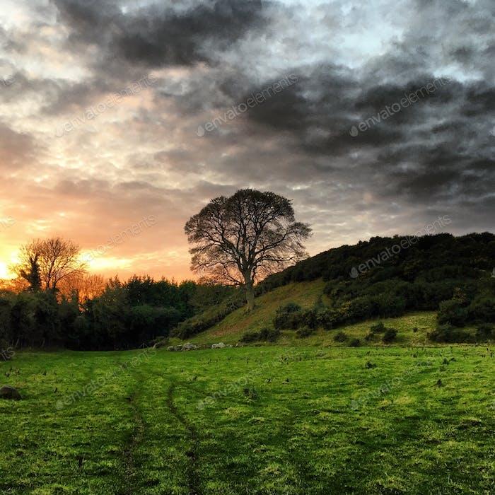 Inspiring Sunset at Dowth, Ireland