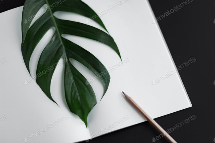 Aerial work scene of open notebook, pencil and monstera leaf