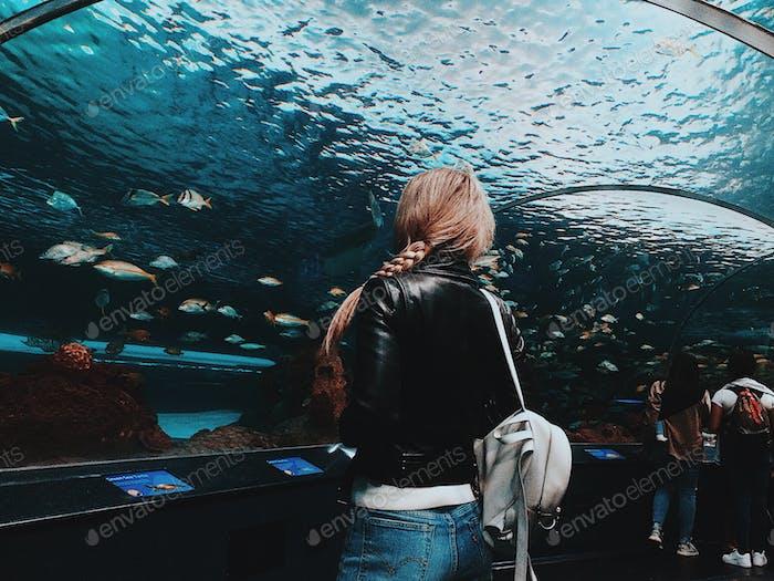 Aquarium und Mädchen