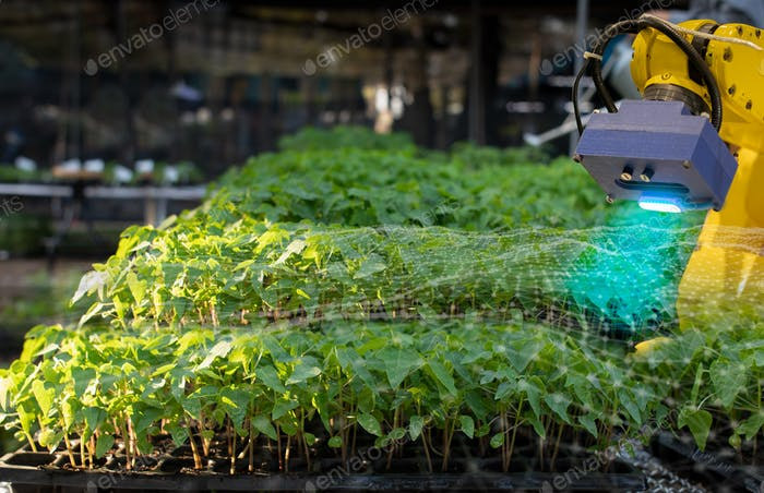 The robot is analysing the problem of plant in greenhouse