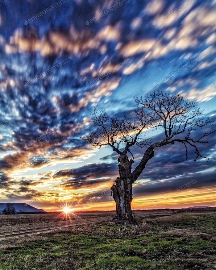 Arkansas sunsets is hard to beat