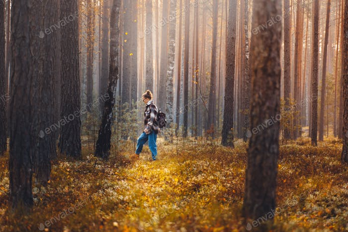 Travel in forest