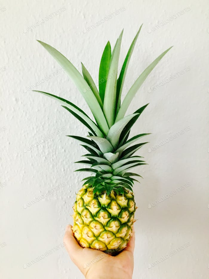 Eine hausgemachte Ananas, die von einer Hand gehalten wird.