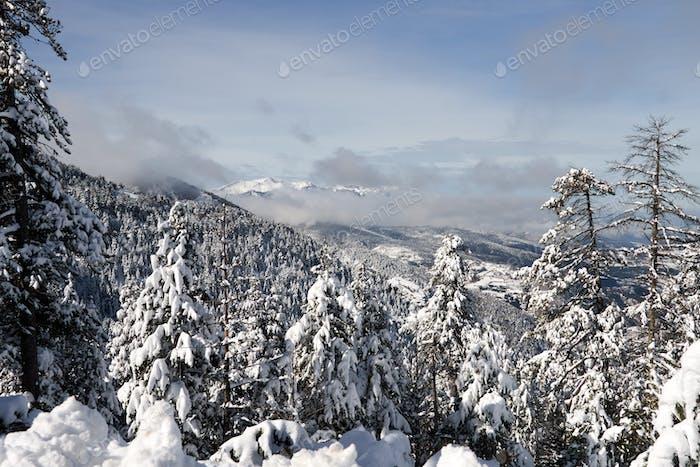 Snowed mountains