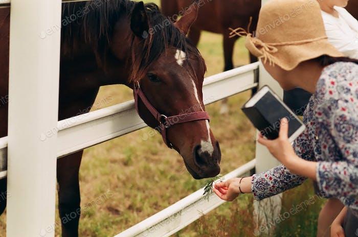 Fotos von Landwirtschaft, Landwirtschaft und Ranch-Lifestyles.