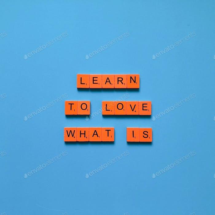 Lerne zu lieben was ist.