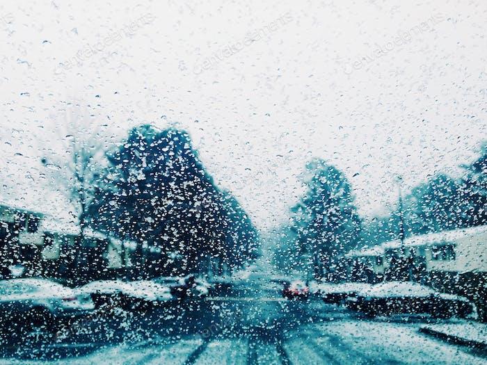 Der Frost