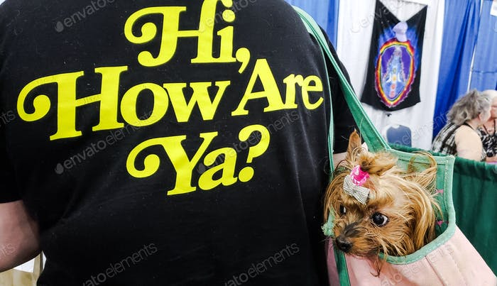 Reluctant dog a yorkie is trying to live up to the wild words printed on her owners jacket but shes