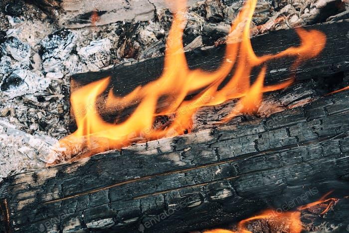 Nahaufnahme des Lagerfeuers