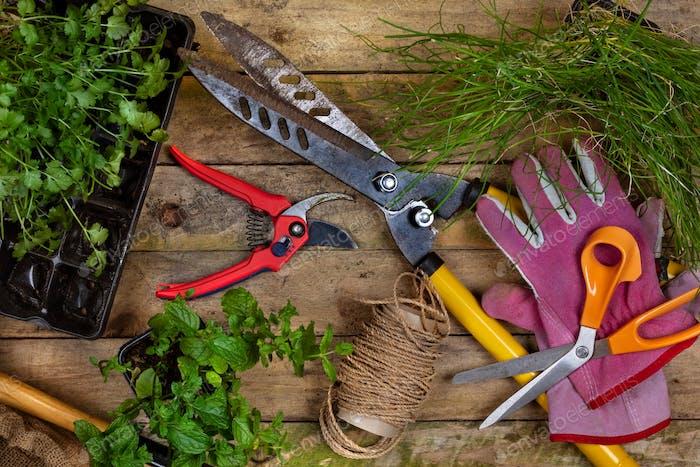 Gartengeräte - Gartenbau