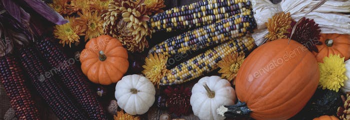 Web banner with fall leaves, mini pumpkins, corn and chrysanthemums