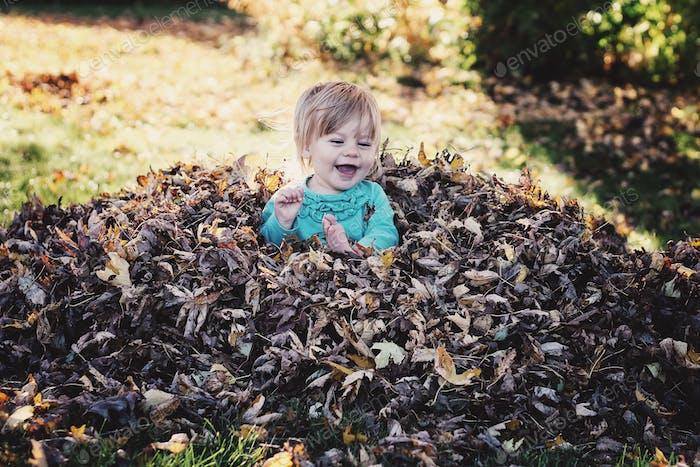 Blätter.