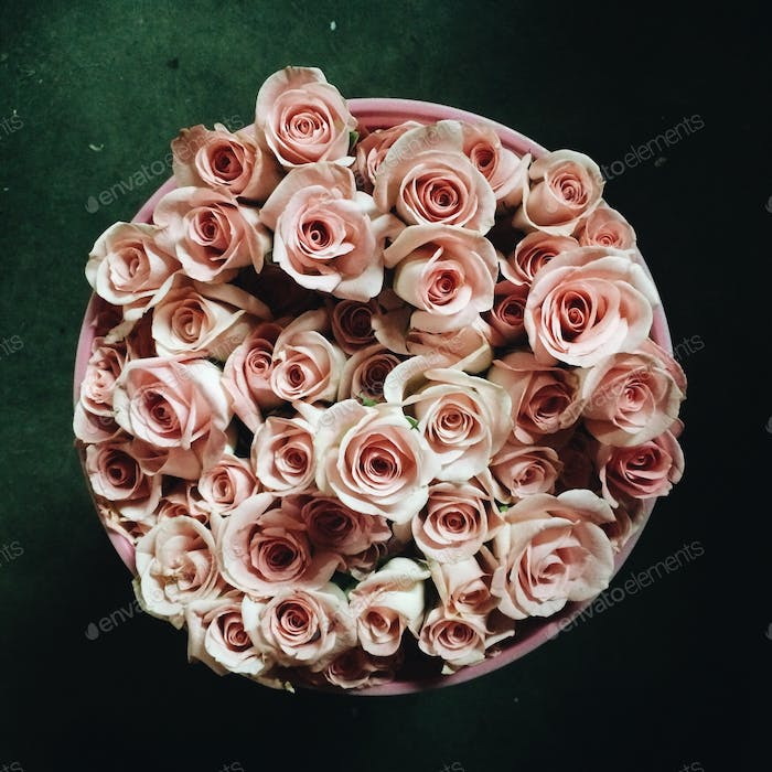 A bucket of roses.