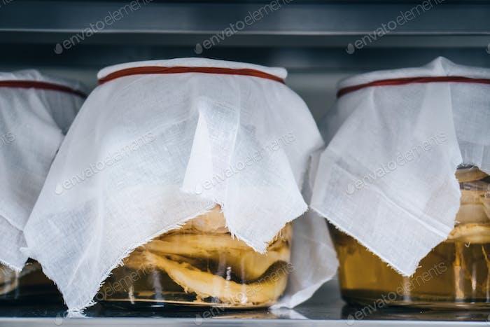 Kombucha sconces in the jars