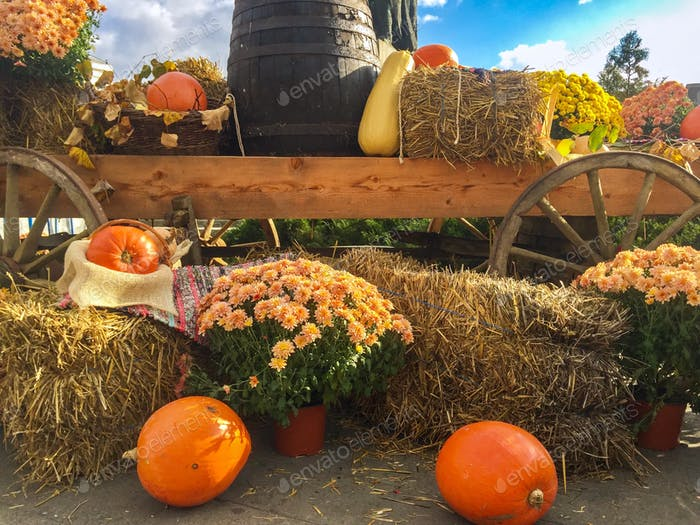 Rustic fall decorations with pumpkins, hay and chrysanthemums in a carriage