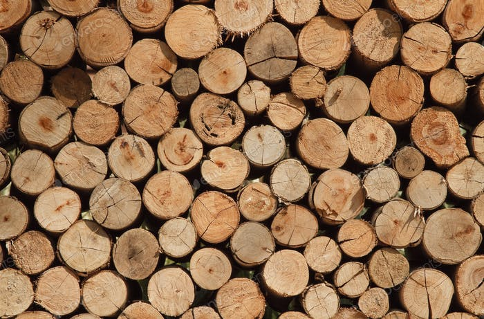 Background of dry chopped firewood logs stacked up in a pile, sawmill tree trunks stack round shape.
