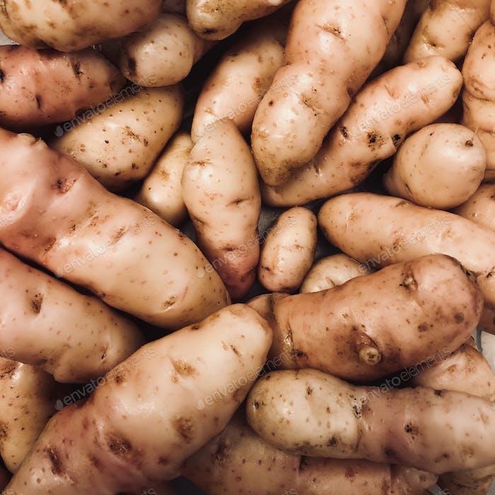Hausgemachter Bio-Kartoffeln