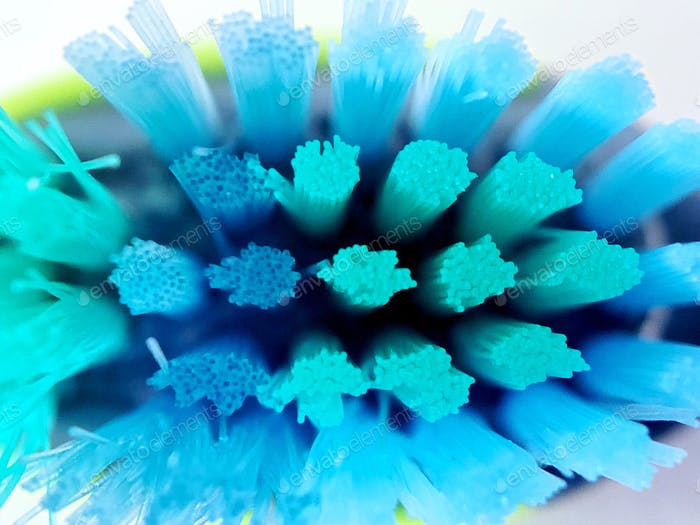 Closeup photo of toothbrush
