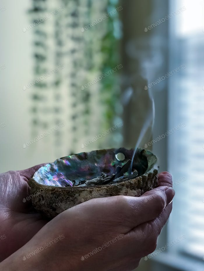 Burning sage in abalone shell with green plants in the background.