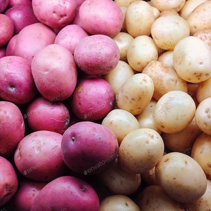 Fresh red and white potatoes