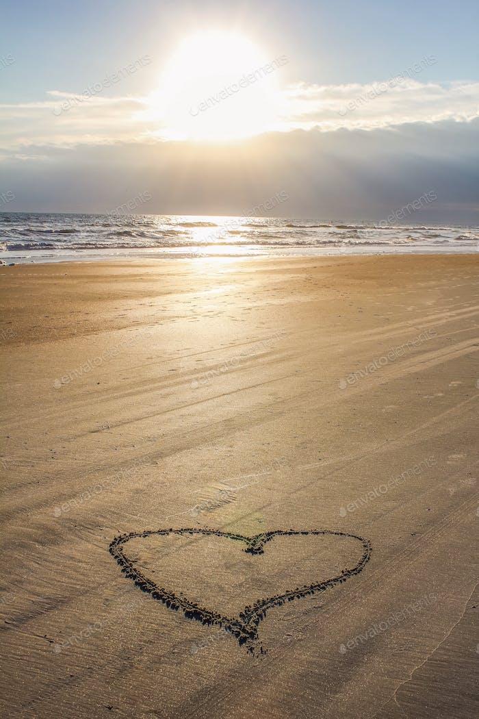 ⭐️ NOMINATED ⭐️    Sunrise Love