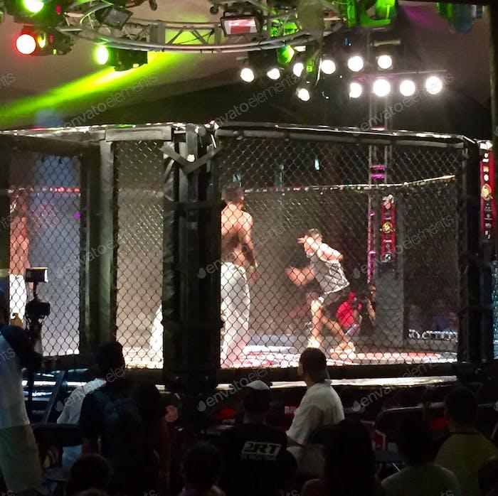 Acción UFC