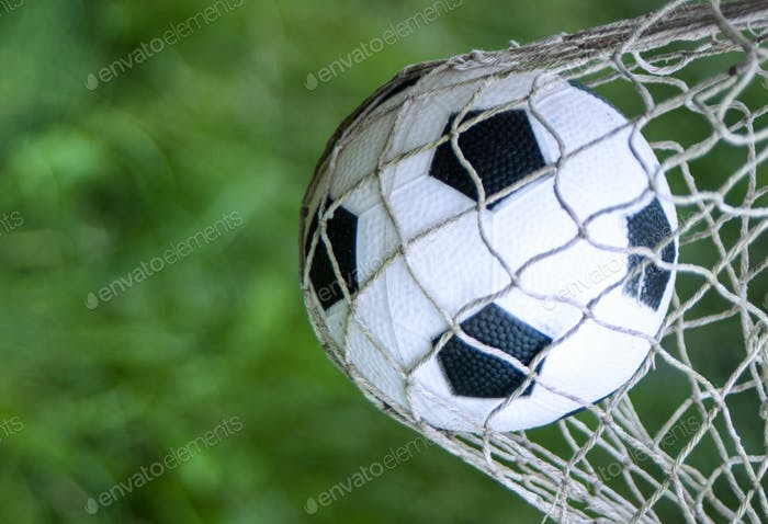 the ball in the goal