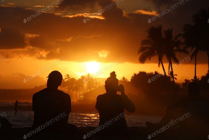 Sonne untergeht über dem Ozean und wirft goldene Erleuchtung am Himmel über Palmen und eine