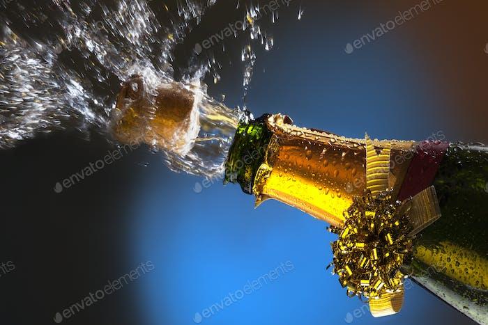Celebration - Champagne