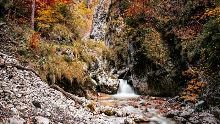 Fall colors, autumn, nature, outdoors, stream, waterfall, no people.